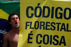Ambientalistas protestan antes de votación de Código Forestal