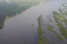 Brasil sentencia de muerte la selva del Amazonas