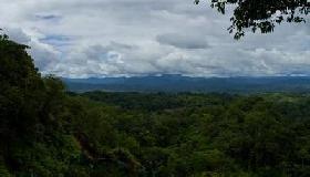 La Amazonia brasileña ha perdido una superficie más grande que Francia en los últimos 40 años