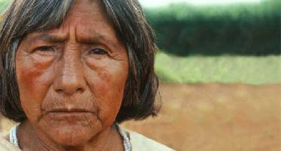 Génocide indigène en vue au Brésil : la Justice Fédérale ordonne l'expulsion des indiens Guarani-Kaiowá