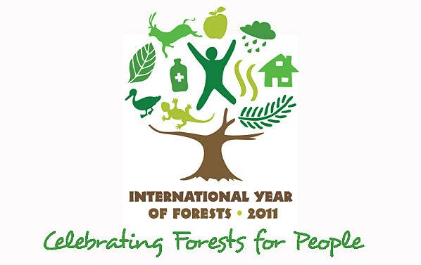 Une ONG et une entreprise qui s'entendent pour une forêt qui revit