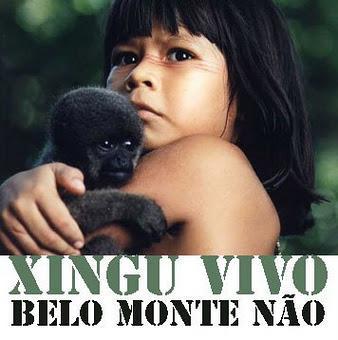 Résistance à BELO MONTE: