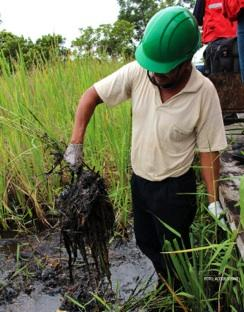 Oil spill in Amazon Rainforest: Pluspetrol refuses to pay for damages